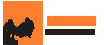 Senderismo en Madrid, agencia de viajes y aventura Logo