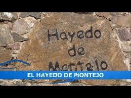 Hayedo De Montejo 4