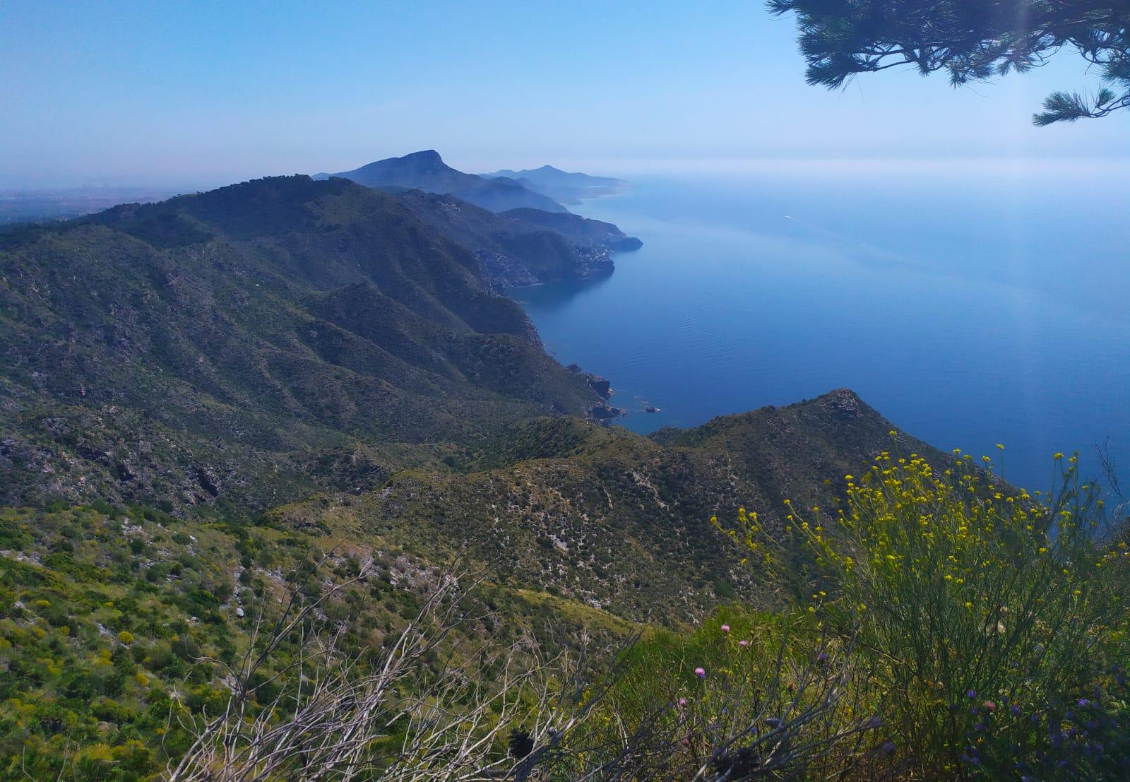 Esencias Costa Murciana 4