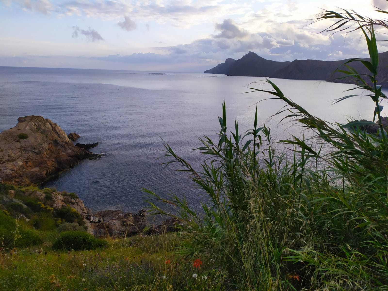 Esencias Costa Murciana 7