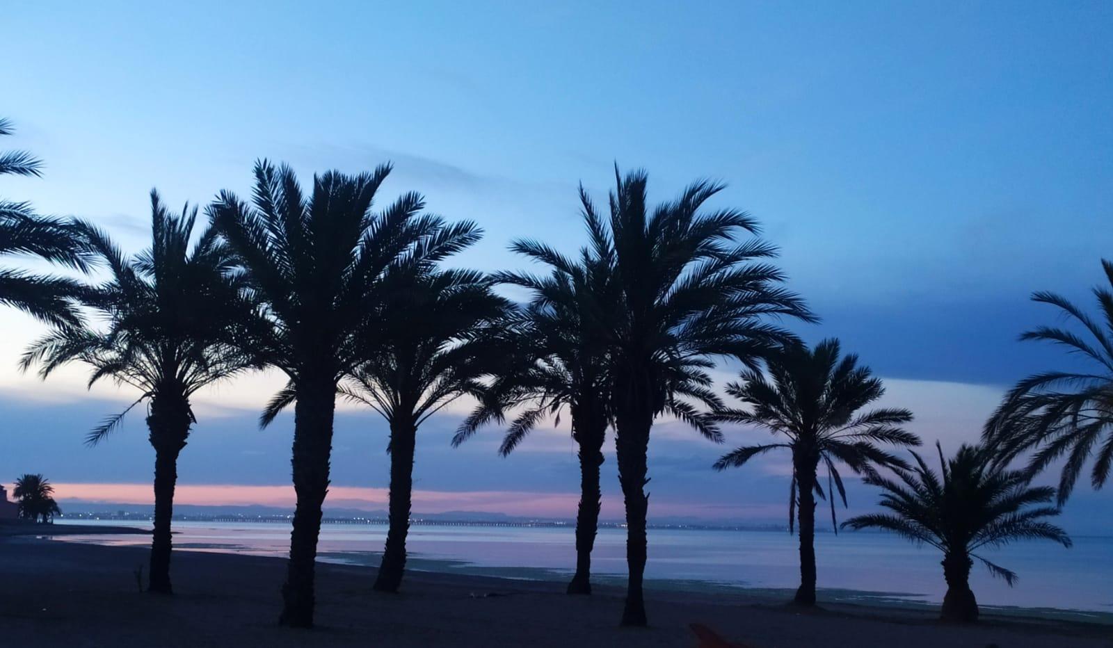 Esencias Costa Murciana 8