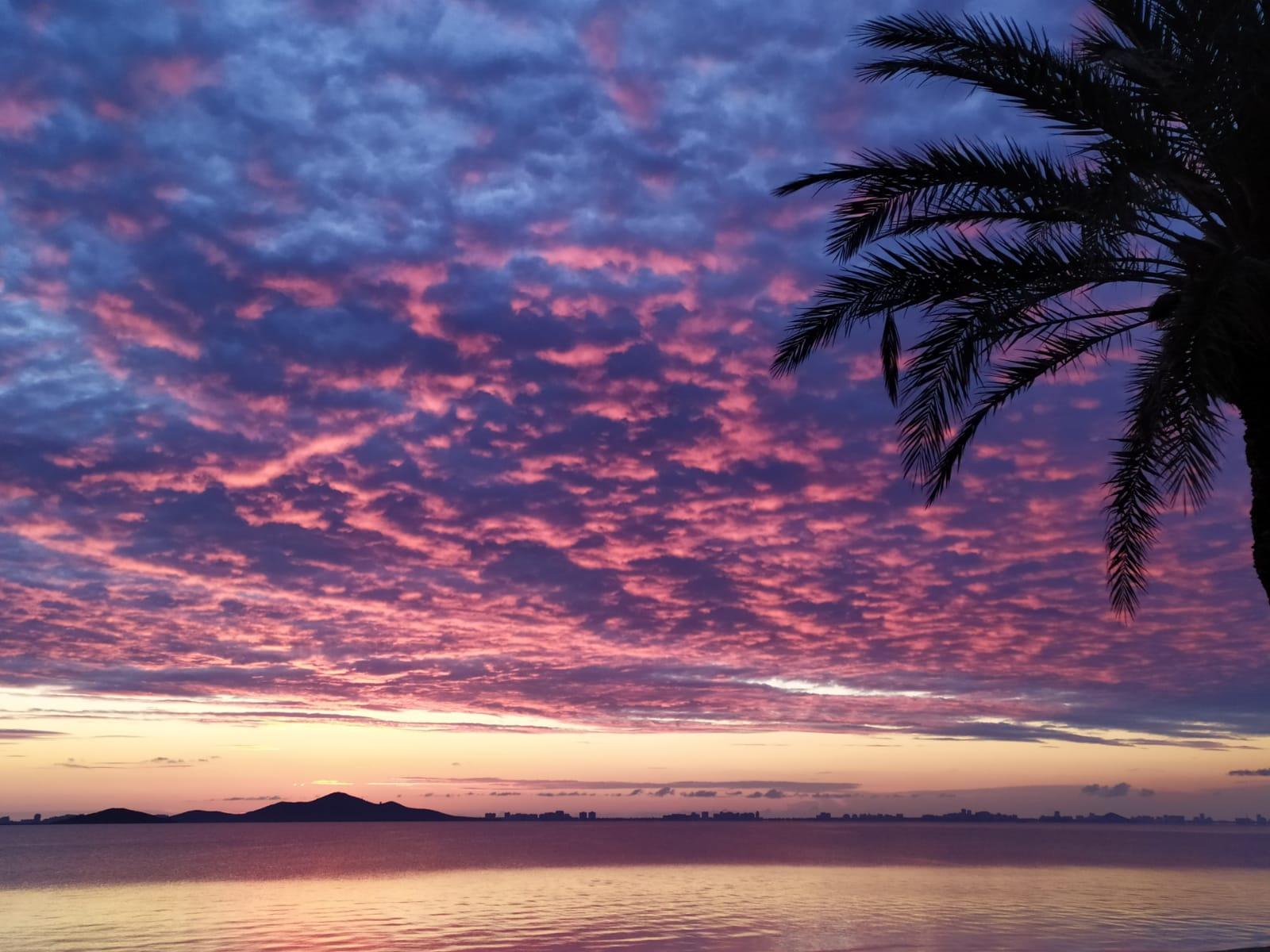 Esencias Costa Murciana 9