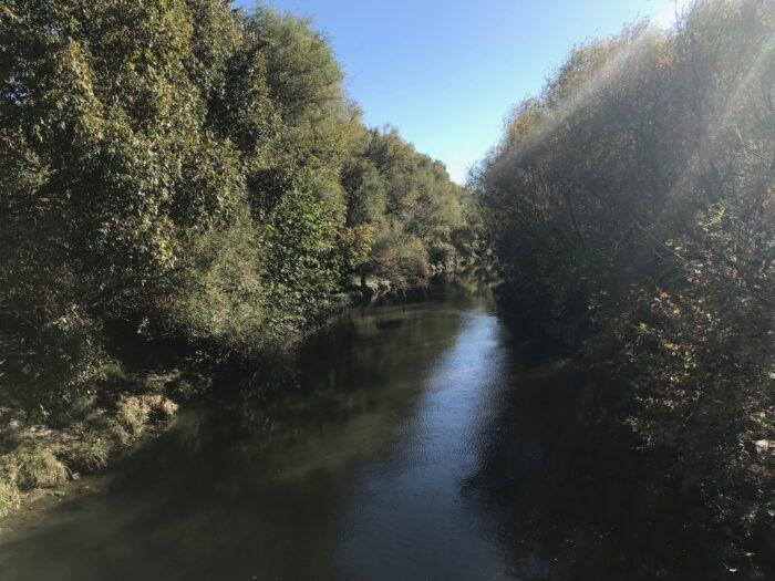 Ruta Matadero Manzanares 6
