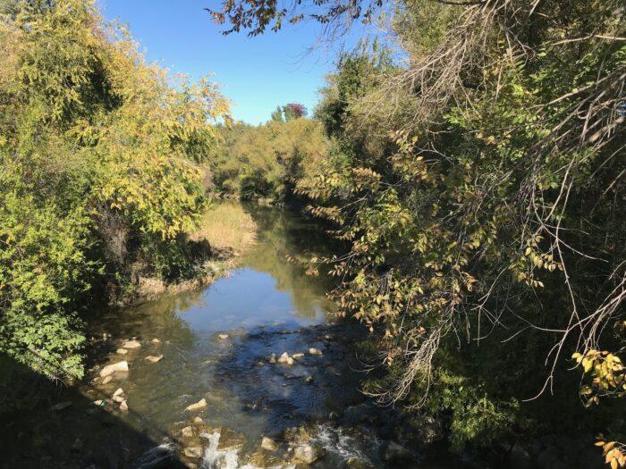 Ruta Matadero Manzanares 7