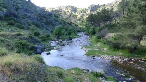 Nacimiento Del Rio Corfio 7